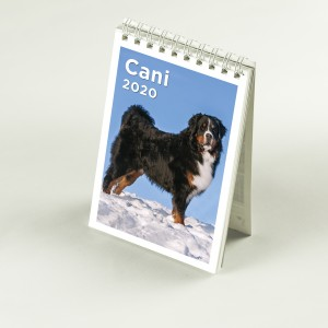 CalendarioMini_template25