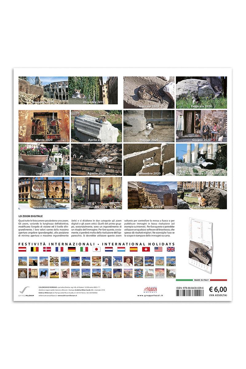 Calendario Iva 2020.Calendario Grande Gatti Di Roma
